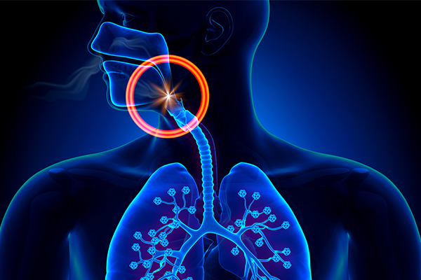 Clinical view of obstructive sleep apnea